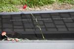 Flower on Memorial Wall