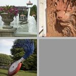 Flower Pots & Containers photographs