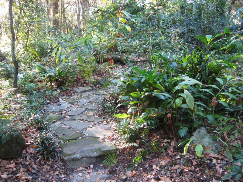 Footpath at Kanapaha