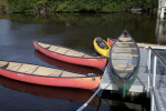 Four Canoes and One Kayak Docked at the Flamingo Marina of Everglades National Park