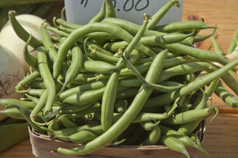Fresh Green Beans in Wooden Basket