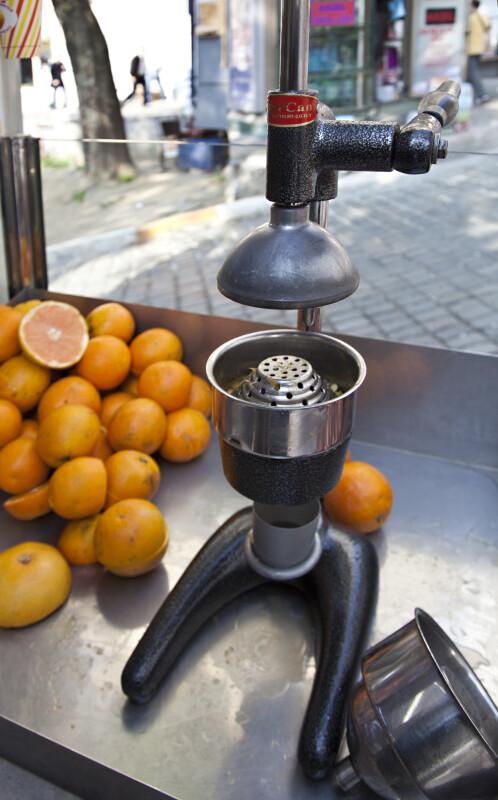 Fruit Presser