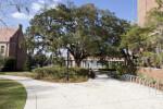 FSU Sidewalk