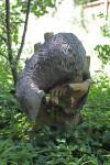 Garden Statue Amongst Small Herbaceous Plants