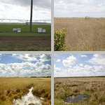 General Views of Fields photographs