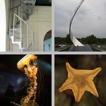 Geometry photographs