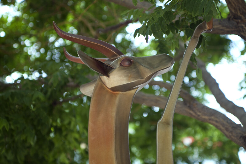 Gerenuk Sculpture