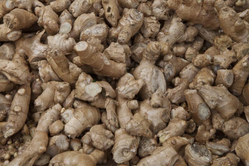 Ginger Root at Haymarket Square