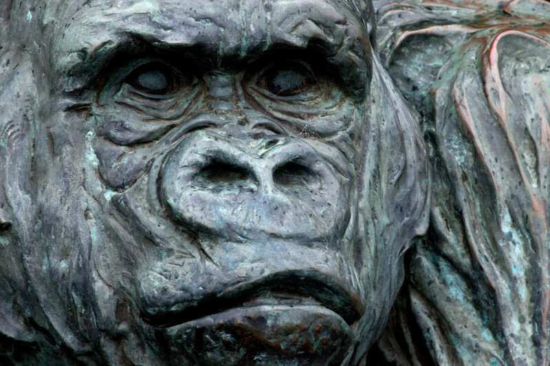 Gorilla Statue Close-Up
