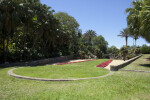 Grassy Area at the Fairchild Tropical Botanical Garden
