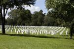 Gravestones in the Grass