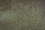 Green and Brown Mottled Floor
