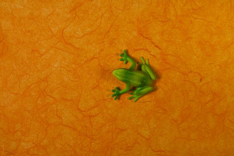 Green Plastic Frog