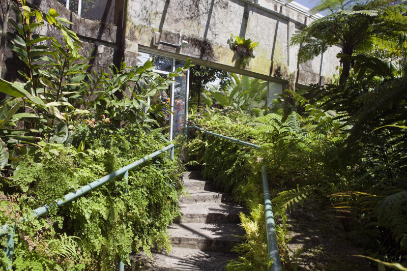 Greenhouse at the fairchild tropical botanic garden - Fairchild tropical botanic garden ...