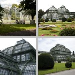 Greenhouses photographs