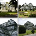 Greenhouses photographs