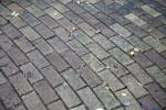 Grey, Brick Pavement at the Kanapaha Botanical Gardens