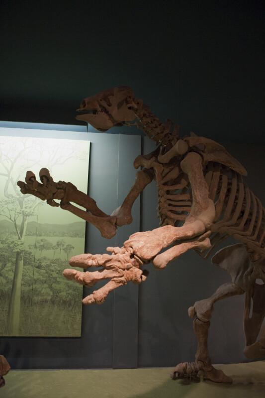 Ground Sloth Standing