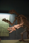 Ground Sloth Standing