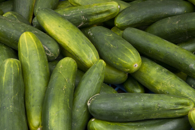 Group of Cucumbers on Display at Haymarket Square
