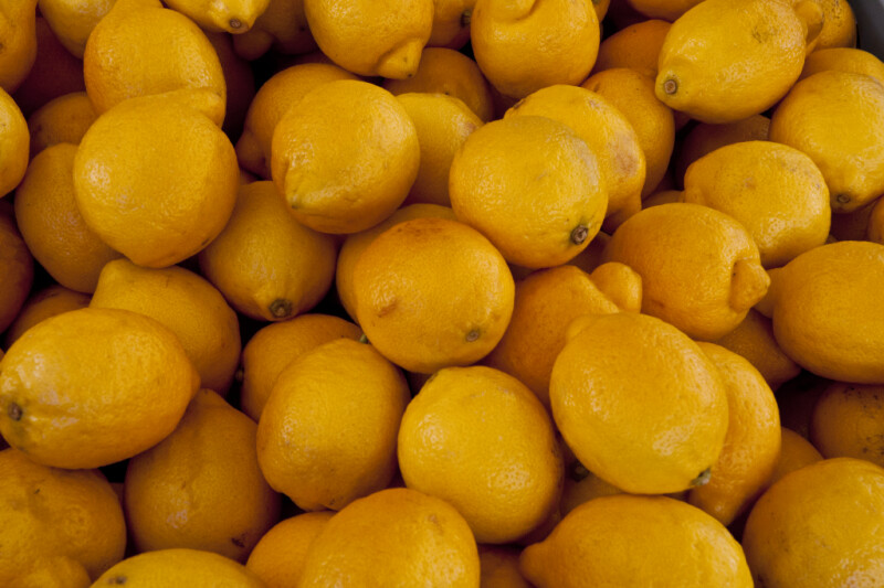 Group of Lemons at Haymarket Square