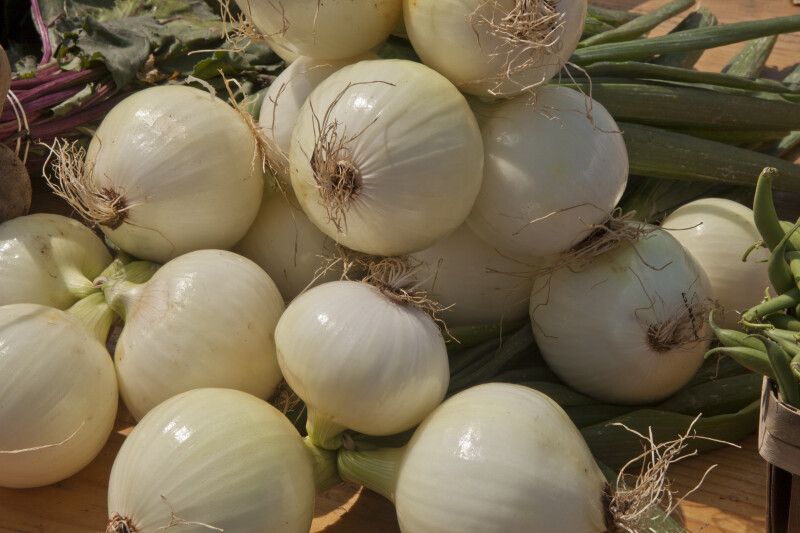 Group of White Onions at a Farmer's Market in Monroeville, Pennsylvania