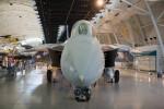 Grumman F-14D Tomcat Nose