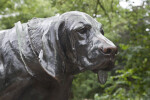 Head of a Bronze  Dog Statue