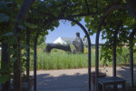 Henry Moore Sculpture and Arch