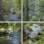 Hillsborough River State Park photographs