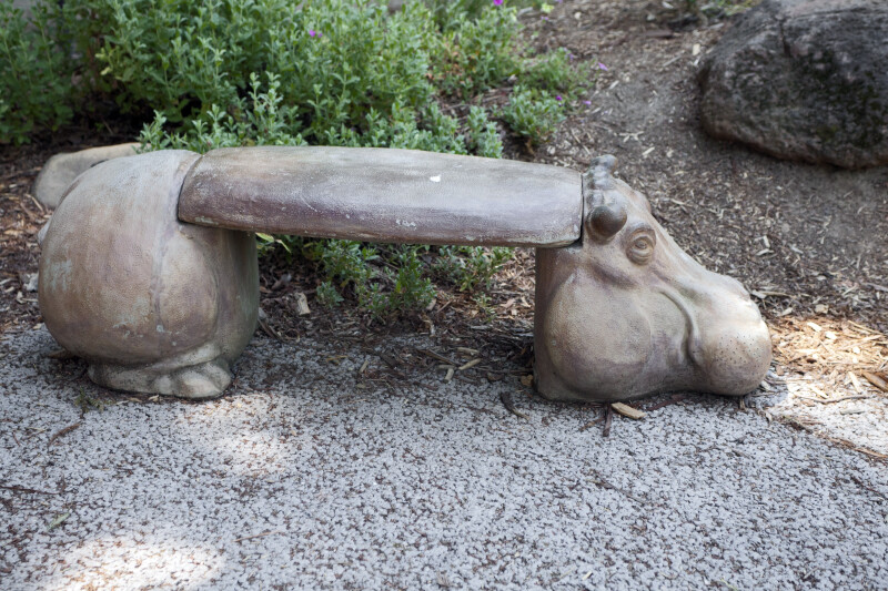 Hippopotamus Bench at the Sacramento Zoo