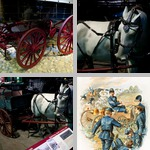 Horse-Drawn Vehicles photographs