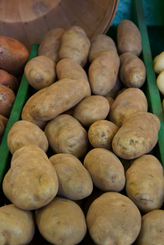 Idaho Baking Potatoes at the Tampa Bay Farmers Market