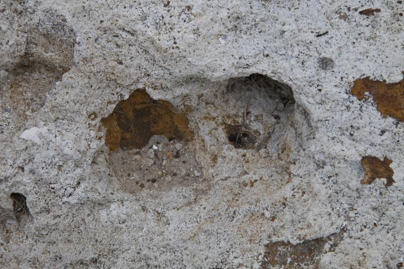 Indentations on a Rock at Colt Creek State Park