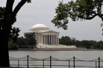 Jefferson Memorial and Cherry Trees