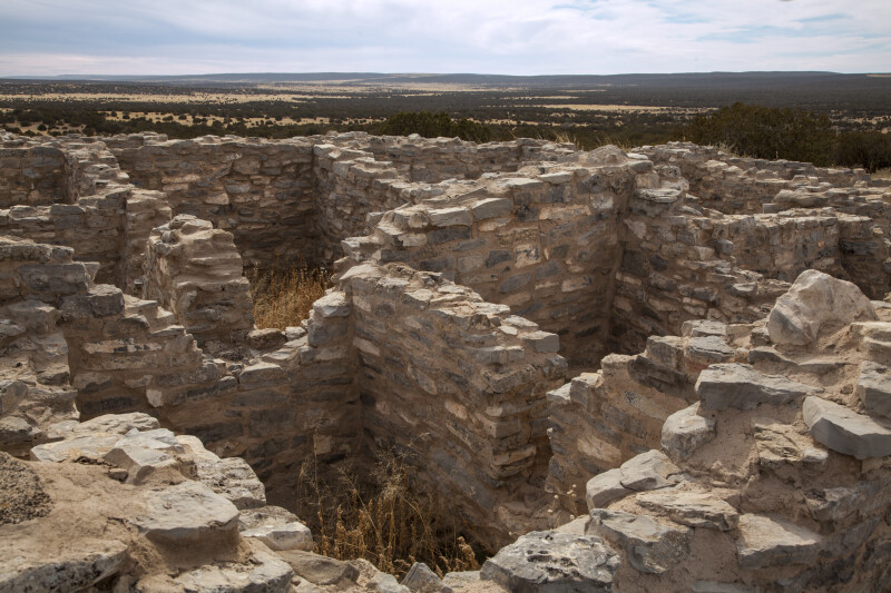 Labyrinthine Ruins