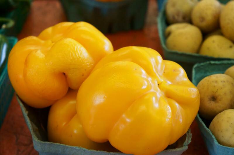 Large Yellow Peppers