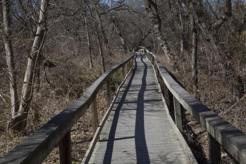 Long Boardwalk