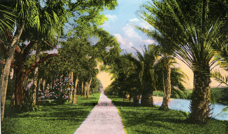 Looking Down Date Palm Avenue, in the Distance