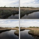 Lower Suwannee National Wildlife Refuge photographs