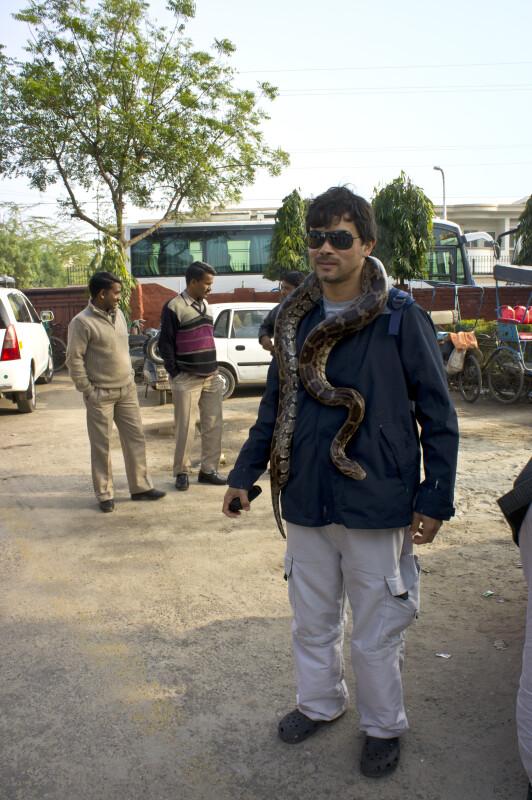 Man and Python