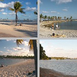 Matheson Hammock Park photographs