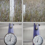 Measurement photographs