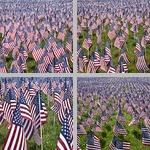 Memorial Day photographs