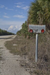 Metal Mailbox on Birdon Road at the Big Cypress National Preserve