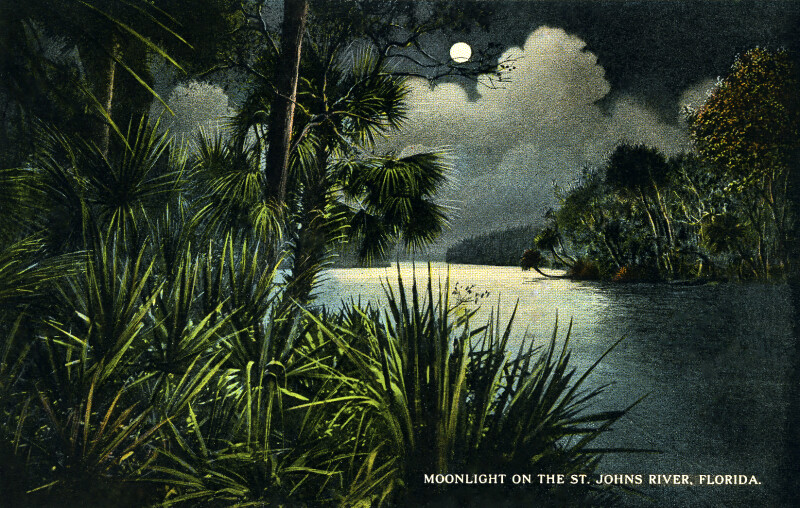 Moonlight on the St. Johns River