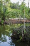 Morikami Islet