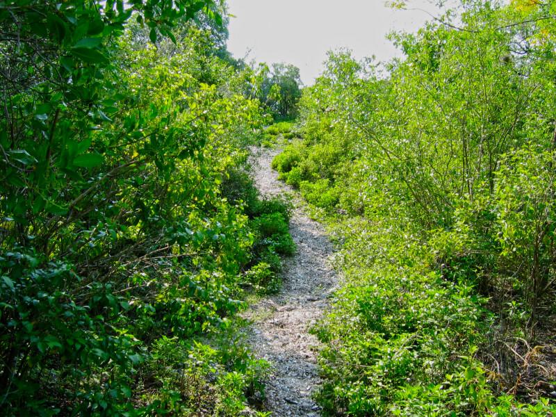 Mound Key Park Path