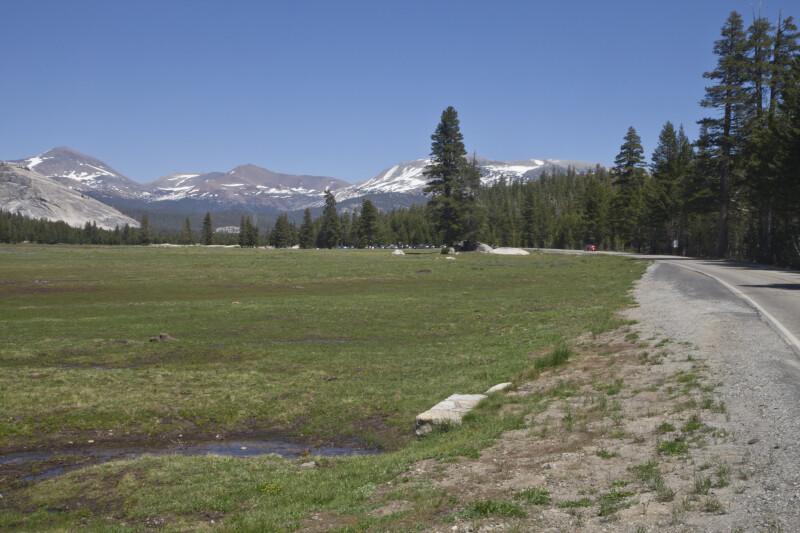 Mount Dana, Mount Gibbs, and Mammoth Peak from Tioga Road