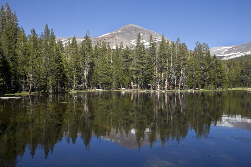 Mount Dana Reflected on the Surface of a Lake